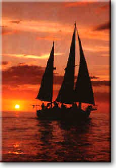 Sunset Dinner Sailboat Cruises